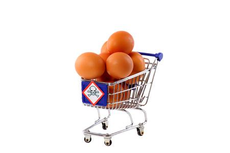 monella: Salmonella en huevos Foto de archivo
