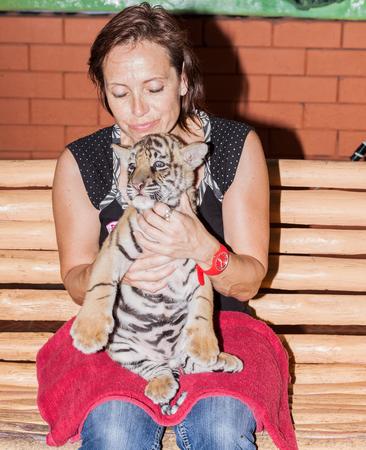 Tiger cub: Una mujer con un cachorro de tigre en su regazo