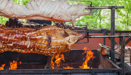 broiling: Three whole pigs on a spit on a barbecue