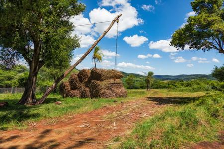 Simple crane device for loading sugarcan on trucks in Paraguay. Reklamní fotografie