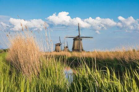Dutch landscape with three windmills in the background. Stock Photo