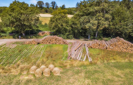 Forestry - Aerial view of tree trunks stacked into a giant pyramid.