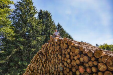 Un homme est assis sur un énorme tas de bois. Sur l'un des troncs d'arbre inférieurs est en langue allemande : Entrée interdite