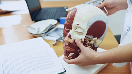 Teacher making injection on human face model