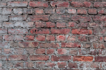 brick texture: brick wall Stock Photo