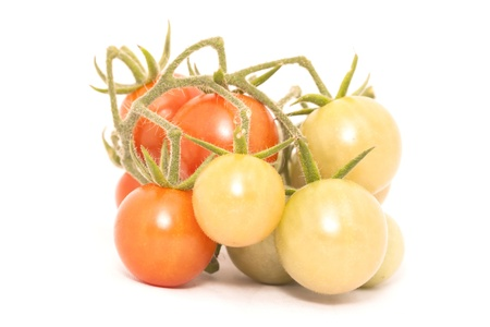 cherry tomato isolated on white background photo