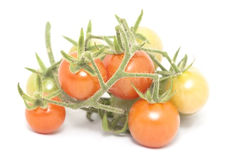 ripe tomato isolated on white background photo