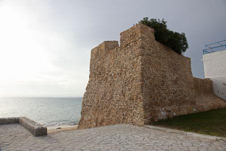 medina: Hammamet Medina fortified walls, Tunisia