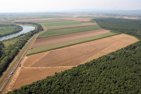Aerial View: Golden Wheat field Stock Photo - 8629787