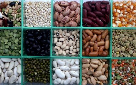 seeds of various: Various beans close up Stock Photo