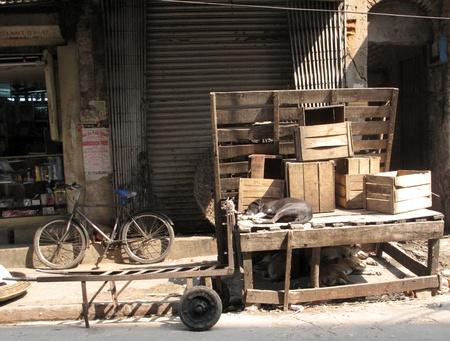 KOLKATA, INDIA - FEBRUARY 03: Streets of Kolkata. Stray dogs is sleeping in the street , February 03, 2009. Stock Photo - 10678666
