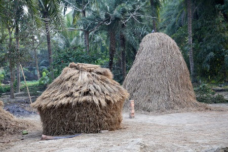 bengali: Bengali village Stock Photo