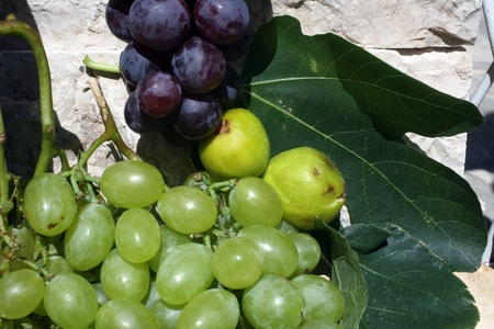 Mediterranean: grapes and figs Stock Photo - 12196371