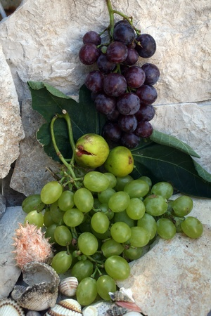 Grapes on a stone background photo