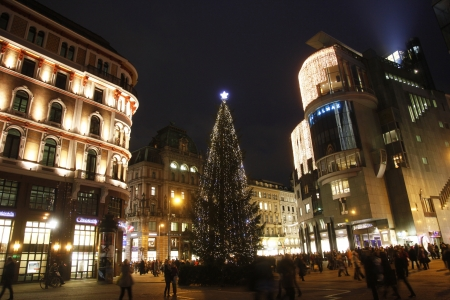 saint stephen cathedral: Christmas tree, St. Stephens Square in Vienna