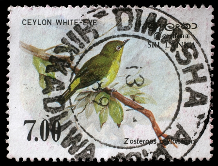 SRI LANKA - CIRCA 1988  A stamp printed in the Republic of Sri Lanka shows the Sri Lanka white-eye bird, Zosterops ceylonensis, circa 1988