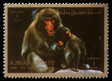 ajman: AJMAN - CIRCA 1973  stamp printed by Ajman shows monkeys, circa 1973 Editorial