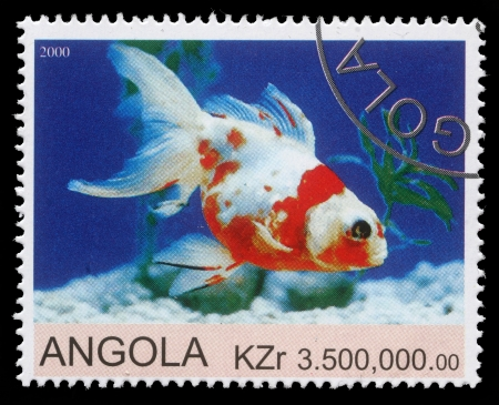 mailmen: ANGOLA - CIRCA 2000  stamp printed by Angola shows Goldfish, circa 2000
