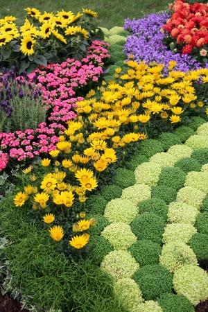 curb appeal: Flowers in garden