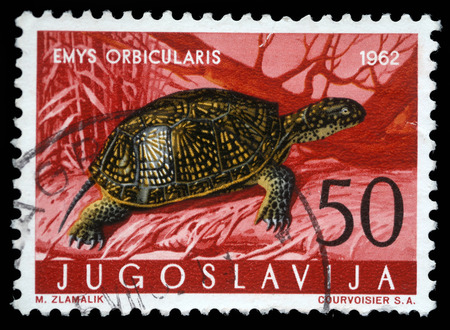 emys: A stamp printed in Yugoslavia shows the European pond turtle with the inscription  Emys Orbicularis  from the series  Fauna , circa 1962