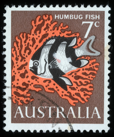 humbug: Stamp printed in Australia shows image of a humbug fish, circa 1966