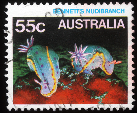 collectible: Stamp printed in Australia shows Bennett's Nudibranch, series, circa 1984