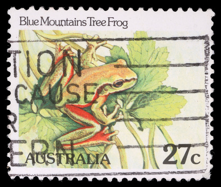 blue mountains tree frog: Stamp printed by Australia, shows Blue Mountains tree frog, circa 1981