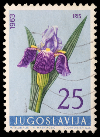 Stamp printed in Yugoslavia shows iris, series, circa 1963 photo