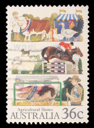 granger: Stamp printed in Australia shows the Livestock, Agricultural Shows series, circa 1987