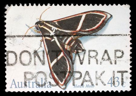 sphingidae: Stamp printed in the Australia shows Hawk Moth, Sphingidae, Insect, circa 1991 Stock Photo