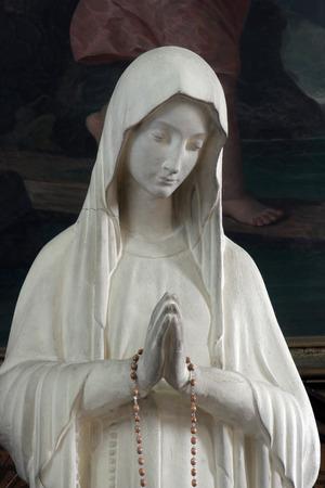 Virgin Mary Imagens