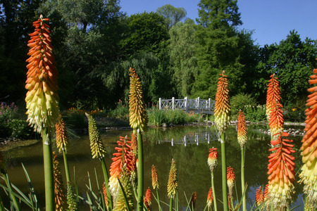 zagreb: Zagreb Botanical Garden Stock Photo