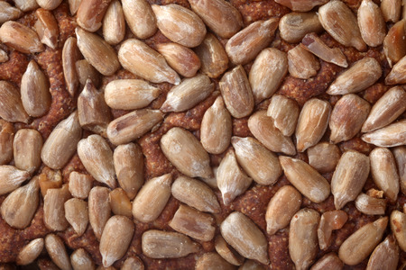 Brown bread sunflower seeds texture in close-up photo