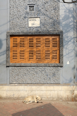 west bengal: Windows of the Mother House, where Mother Teresa used to live on Dec 25, 2012 in Kolkata, West Bengal, India.