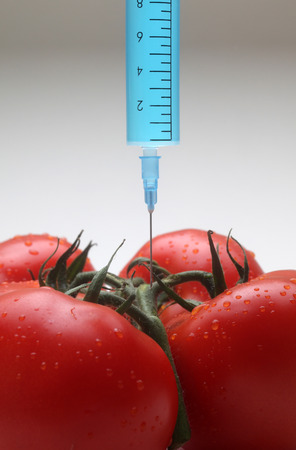 Injection into fresh red tomato photo