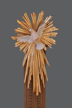 espiritu santo: Holy Spirit Bird