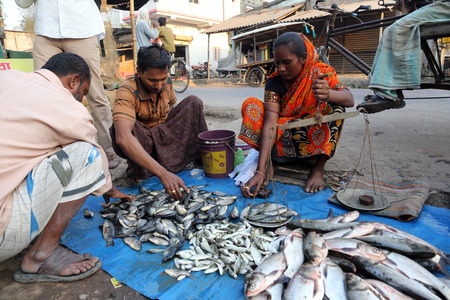 KUMROKHALI, INDIA - FEBRUARY 13: Unidentified man sells fish at fish market in Kumrokhali, West Bengal, India on February 13, 2014. Seafood is one of the main part of ration for local people.