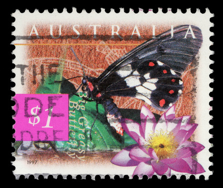 greasy: A stamp printed in Australia shows Big Greasy Butterfly and blue lily (Nymphaea violacea) Stock Photo