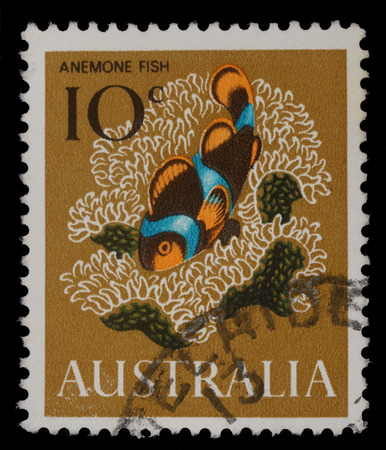 clown fish: a stamp printed in the Australia shows Anemone fish, Clown fish