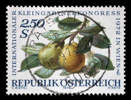 show garden: A stamp printed in Austria, devoted to the International Garden Show, Vienna, shows pears on a branch