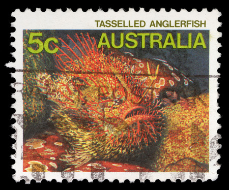 fish exhibition: A Stamp printed in AUSTRALIA shows the Tasseled Anglerfish