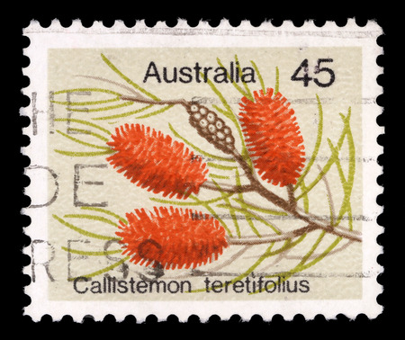 ranges: A stamp printed in Australia from the Wild Flowers issue shows Needle Bottlebush (Callistemon teretifolius)