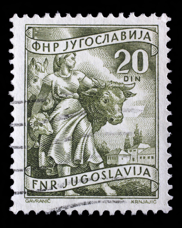 yugoslavia federal republic: Stamp printed in Yugoslavia shows Livestock raising, inscriptions from series Domestic economy, circa 1952