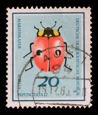 stempeln: Stamp printed in Germany from the Useful Beetles issue shows two-spot ladybird beetle Adalia bipunctata, circa 1968. Editorial