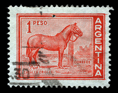 Stamp printed in Argentina with the image of the Caballo Criollo breed which is the native horse of Argentina, circa 1959. Stock Photo