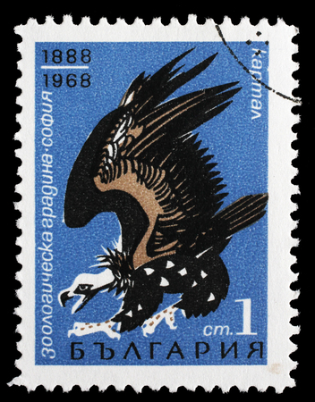 80 years: Stamp printed in Bulgaria shows Cinereous Vulture(Aegypius monachus), 80 years zoo of Sofia, circa 1968. Editorial