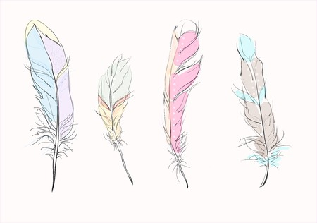 colored: 4 Colored feathers Illustration