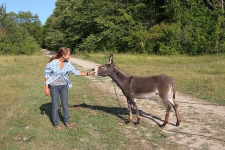 muzzle: Girl in jeans strokes muzzle pet donkey
