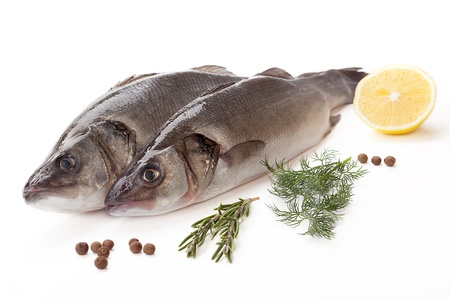Fresh sea bass on white background  photo