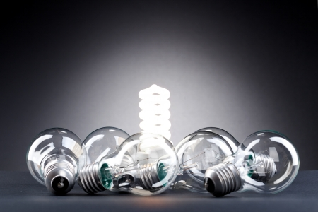 energy efficient: Different lamp. Concept for energy conservation